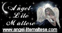 ALM_AngelLink1